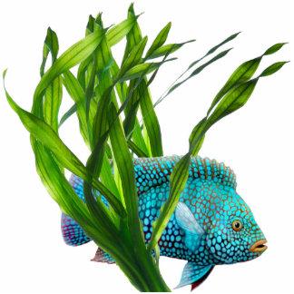 Blue Fish in Seaweed Ornament Photo Sculpture Ornament