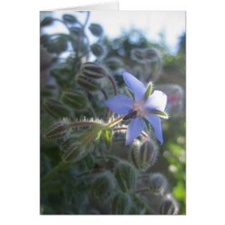 Blue Flower Haze Greeting Card