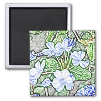 blue flowers on green sketch plumbago plant magnet