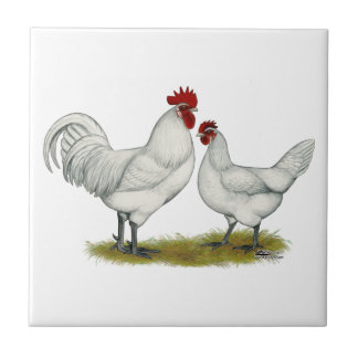 Blue Foot Chickens Tile