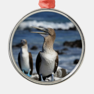 Blue footed Boobies Galapagos Islands Metal Ornament