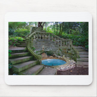 Blue Garden Fountain Mouse Pad