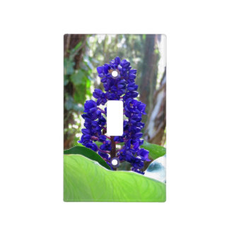 Blue Ginger Light Switch Cover