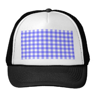 Blue Gingham Material Trucker Hat