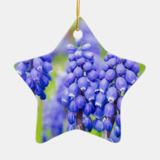Blue grape hyacinths ceramic star ornament