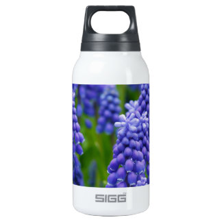 Blue Grape Hyacinths Insulated Water Bottle