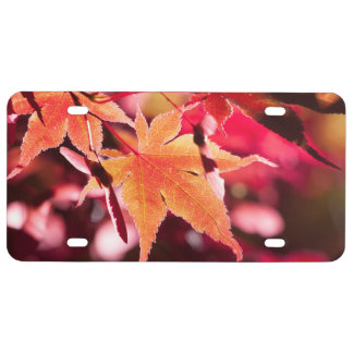 Blue Grapes and Red Vine Leaves License Plate
