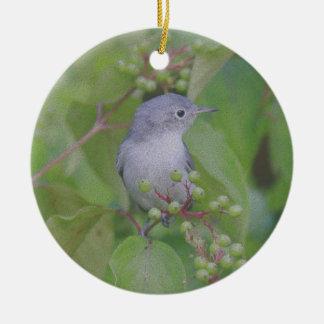 Blue gray gnatcatcher ceramic ornament