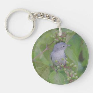 Blue-Gray Gnatcatcher Keychain