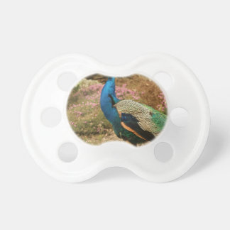 Blue Green and Orange Peacock Pacifier