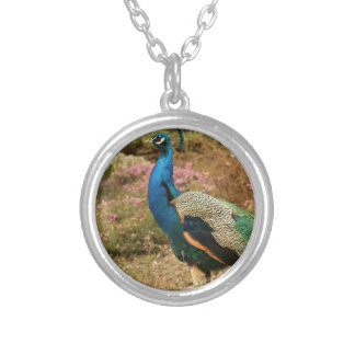 Blue Green and Orange Peacock Silver Plated Necklace