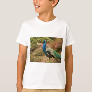 Blue Green and Orange Peacock T-Shirt