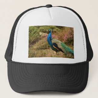 Blue Green and Orange Peacock Trucker Hat