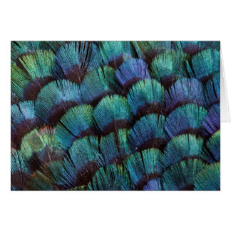 Blue-green pheasant feather design card
