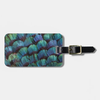 Blue-green pheasant feather design luggage tag