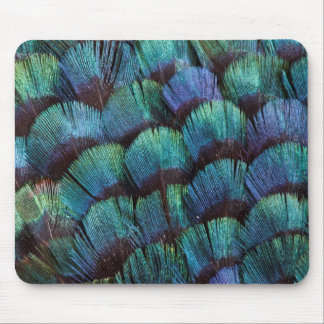 Blue-green pheasant feather design mouse pad