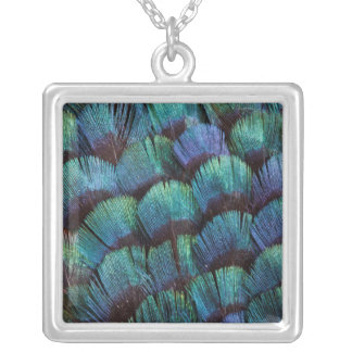Blue-green pheasant feather design silver plated necklace