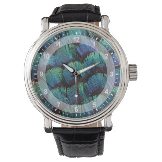 Blue-green pheasant feather design watch