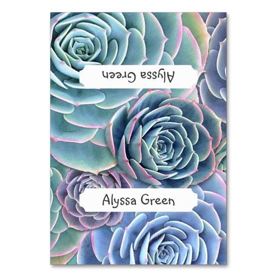 Blue Green Tented Succulent Name Place Cards
