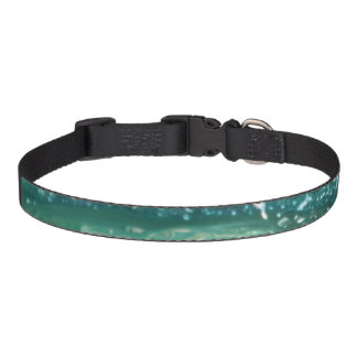 Blue green white turquoise abstract paint lines pet collar