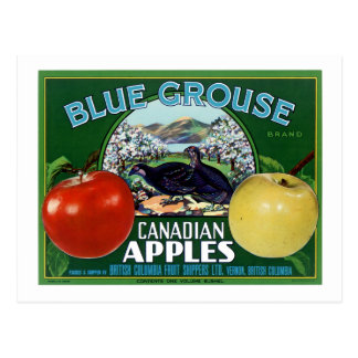 Blue Grouse Canadian Apples Postcard