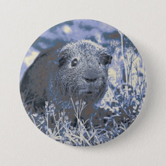 blue guinea pig 3 inch round button