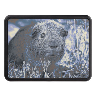 blue guinea pig trailer hitch cover
