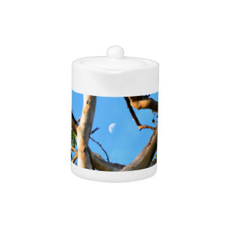 BLUE GUM TREE QUEENSLAND AUSTRALIA
