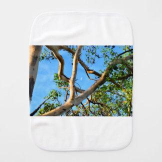 BLUE GUM TREE QUEENSLAND AUSTRALIA BURP CLOTH
