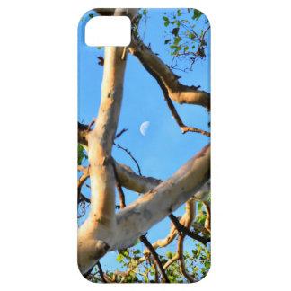 BLUE GUM TREE QUEENSLAND AUSTRALIA CASE FOR THE iPhone 5