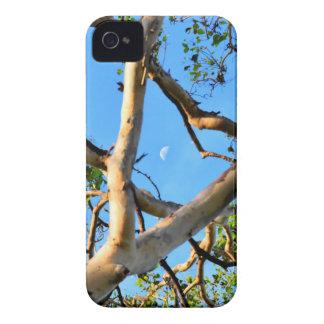 BLUE GUM TREE QUEENSLAND AUSTRALIA Case-Mate iPhone 4 CASE
