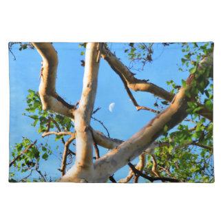 BLUE GUM TREE QUEENSLAND AUSTRALIA PLACEMAT
