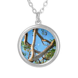 BLUE GUM TREE QUEENSLAND AUSTRALIA SILVER PLATED NECKLACE