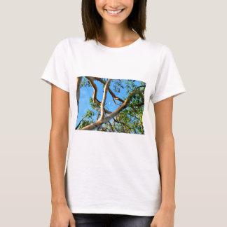 BLUE GUM TREE QUEENSLAND AUSTRALIA T-Shirt