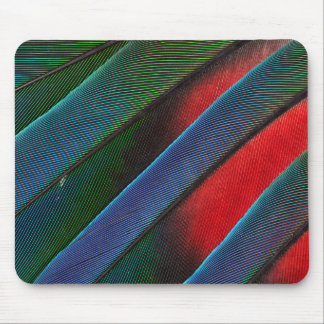 Blue Headed Parrot Feather Design Mouse Pad