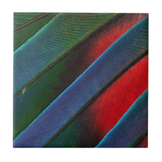 Blue Headed Parrot Feather Design Tile