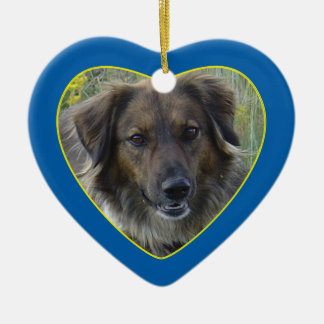 Blue Hearts Pet Memorial Photo Template Ceramic Ornament