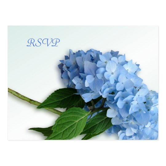 Blue Heaven Hydrangea Wedding RSVP Postcard