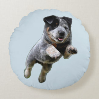 Blue Heeler Couch Pillow