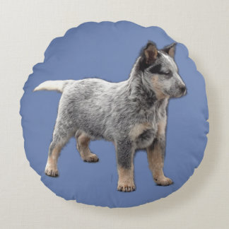 Blue Heeler Couch Pillow 3