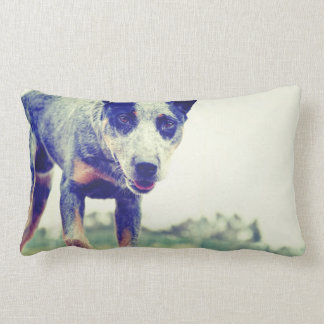 Blue Heeler Lumbar Pillow