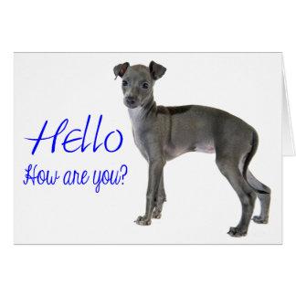 Blue Hello Gray Italian Greyhound Puppy Dog Card