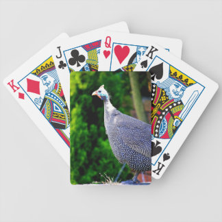 Blue Helmeted Guinea Fowl standing in the sun Bicycle Playing Cards