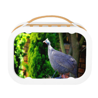 Blue Helmeted Guinea Fowl standing in the sun Lunch Box