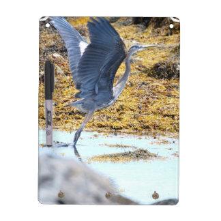 Blue Heron Dry-Erase Whiteboard