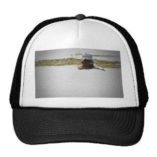 Blue Heron Hats
