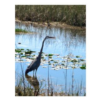 Blue Heron in the Glades Letterhead Design