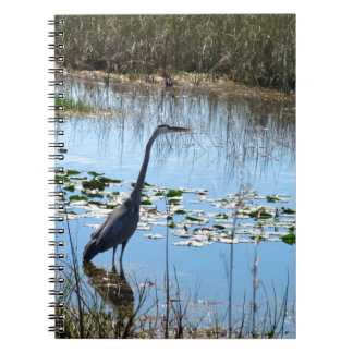 Blue Heron in the Glades Note Books