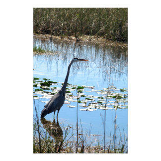 Blue Heron in the Glades Stationery