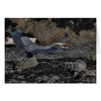 Blue Heron Note Card
